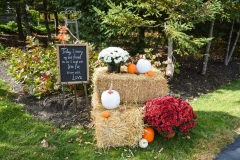 Ceremony-Fall-Display